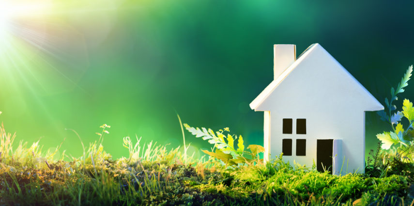 Green Trends focus on indoor air quality